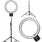 Ring  Light 18 Inches With Mirrow + Stand