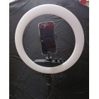 Ring Light 10 inches With Phone Clip and Stand