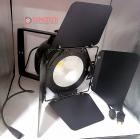 COB 100 watts LED Light