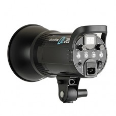 Godox DE300 Studio Strobe Light (2-in-1 Package)